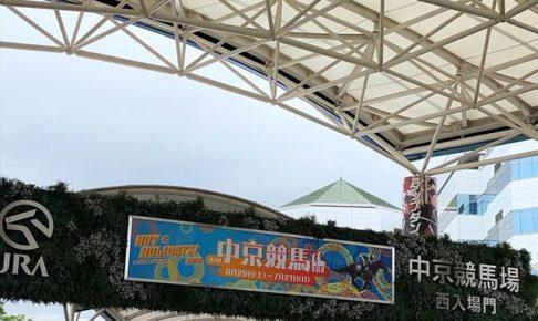 中京競馬場,花火,2019,イベント,穴場